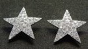 Star Crystal Earrings *NEW* NEW!! Rhinestone star earrings that are 3/4 inches in size.